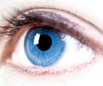 Строение человеческого глаза и как он работает