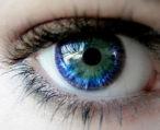 Глаз человека — физиология и развитие с младенчества