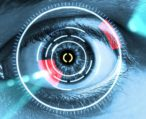 Анатомия глаза: передняя и задняя камеры, их функции