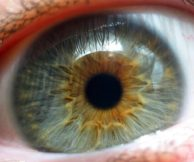 Что такое атрофия сетчатки глаза и как ее лечить