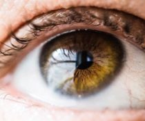 Что такое боковое зрение