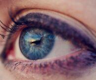 Что важно знать когда лечишь сетчатку глаза
